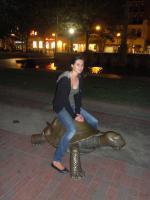 Большая бостонская черепаха
