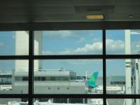 даже в JFK можно найти много ирландских няшек =)