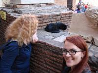 Киса в Колизее